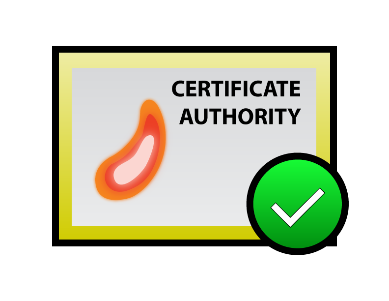 certificate authority fire horn check